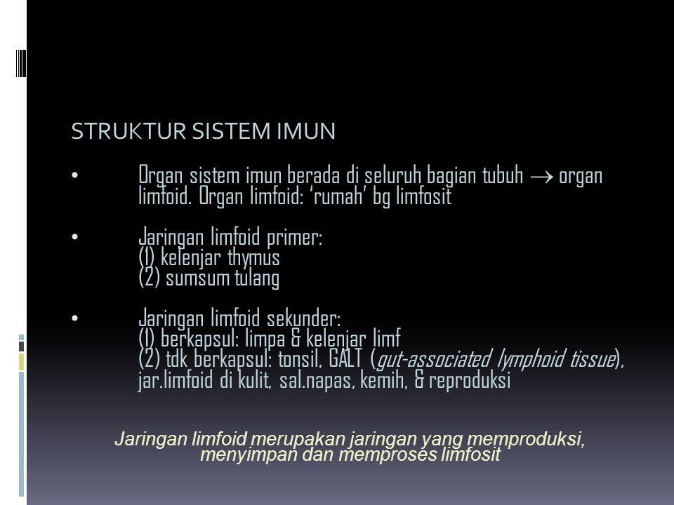STRUKTUR SISTEM IMUN Organ sistem imun berada di seluruh bagian tubuh  organ limfoid. Organ limfoid: 'rumah' bg limfosit Jaringan limfoid primer: (1)