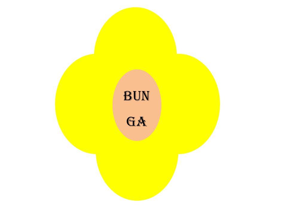 BUN GA