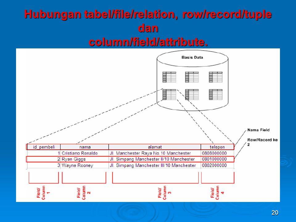 Hubungan tabel/file/relation, row/record/tuple dan column/field/attribute. 20