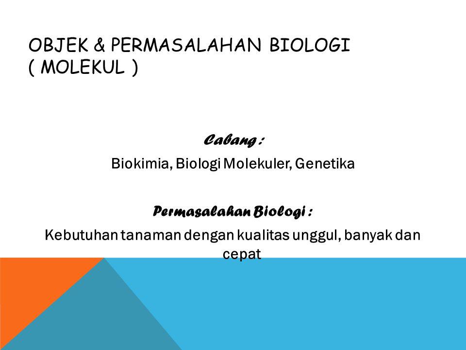 OBJEK & PERMASALAHAN BIOLOGI ( MOLEKUL ) Cabang : Biokimia, Biologi Molekuler, Genetika Permasalahan Biologi : Kebutuhan tanaman dengan kualitas unggu