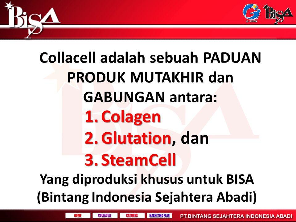 Collacell adalah sebuah PADUAN PRODUK MUTAKHIR dan GABUNGAN antara: 1.Colagen 2.Glutation 2.Glutation, dan 3.SteamCell Yang diproduksi khusus untuk BI