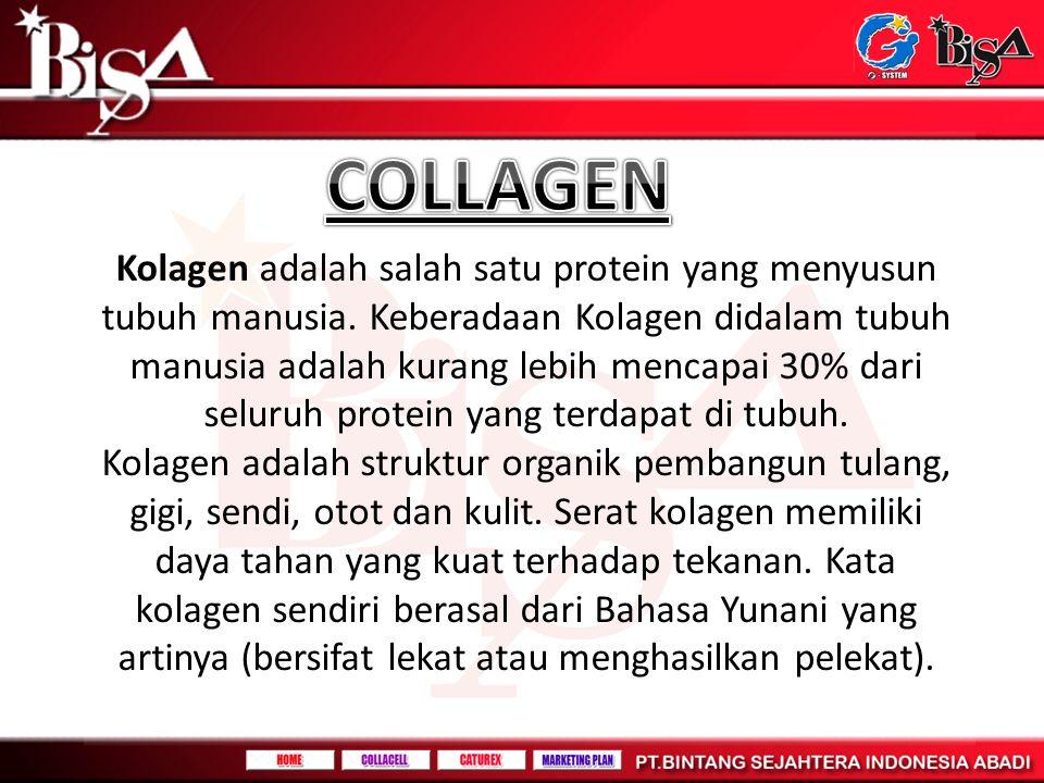 Kolagen adalah salah satu protein yang menyusun tubuh manusia. Keberadaan Kolagen didalam tubuh manusia adalah kurang lebih mencapai 30% dari seluruh