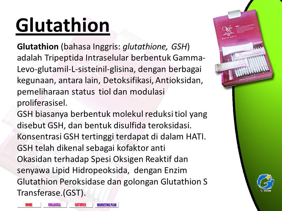 Golf Lake Residence Rukan Paris A-82, Cengkareng - Jakarta Barat Glutathion Glutathion (bahasa Inggris: glutathione, GSH) adalah Tripeptida Intraselul