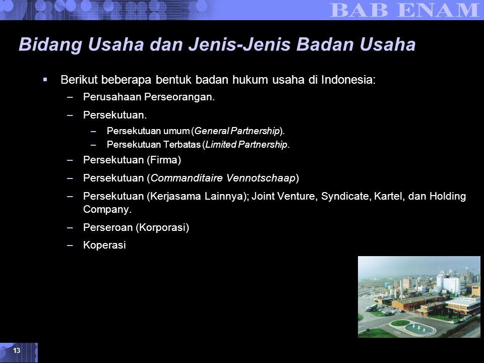 Identifikasi Peluang dan Memilih Jenis Usaha © 2007 UMB 13 Bidang Usaha dan Jenis-Jenis Badan Usaha  Berikut beberapa bentuk badan hukum usaha di Indonesia: –Perusahaan Perseorangan.