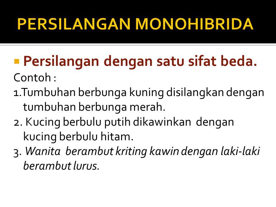 1. Persilangan Monohibrida 2. Persilangan Dihibrida 3. Persilangan Trihibrida 4. Penyakit Menurun pada Manusia