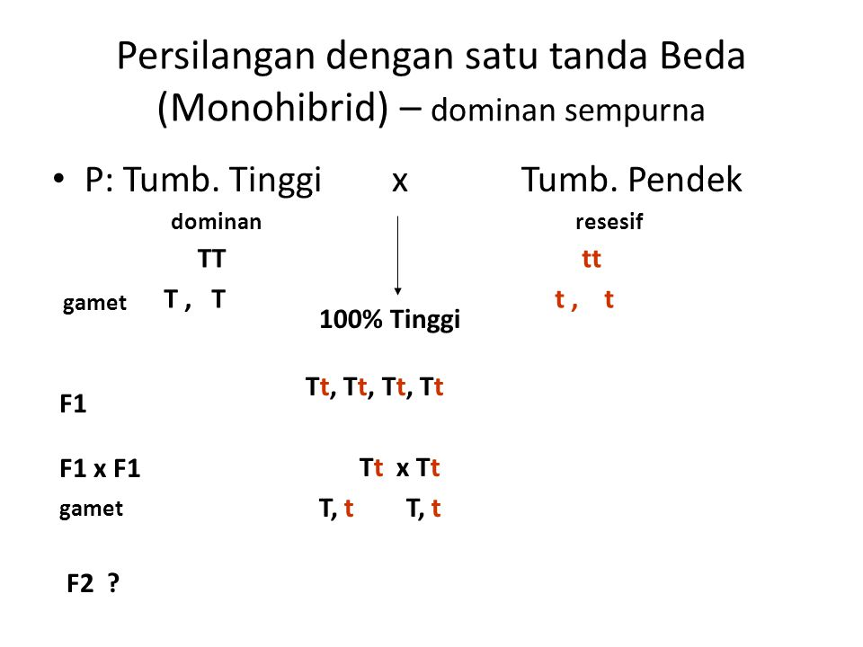 Persilangan dengan satu tanda Beda (Monohibrid) – dominan sempurna P: Tumb. Tinggi x Tumb. Pendek dominanresesif TTtt 100% Tinggi gamet T, Tt, t F1 Tt