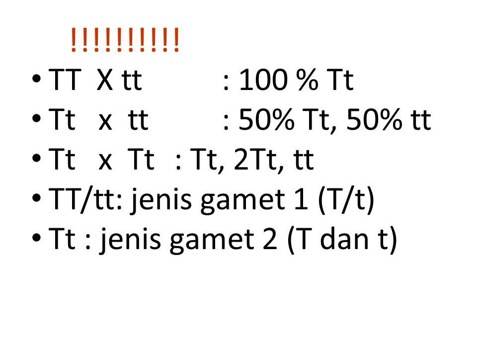 TT X tt: 100 % Tt Tt x tt: 50% Tt, 50% tt Tt x Tt: Tt, 2Tt, tt TT/tt: jenis gamet 1 (T/t) Tt : jenis gamet 2 (T dan t) !!!!!!!!!!