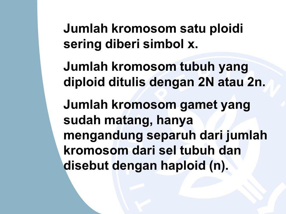 Jumlah kromosom satu ploidi sering diberi simbol x. Jumlah kromosom tubuh yang diploid ditulis dengan 2N atau 2n. Jumlah kromosom gamet yang sudah mat