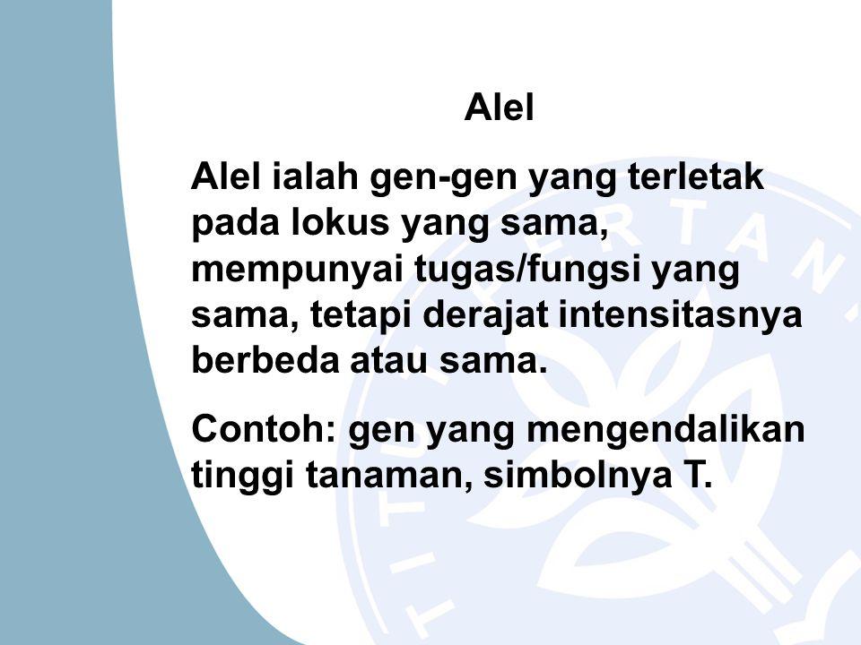Alel Alel ialah gen-gen yang terletak pada lokus yang sama, mempunyai tugas/fungsi yang sama, tetapi derajat intensitasnya berbeda atau sama. Contoh: