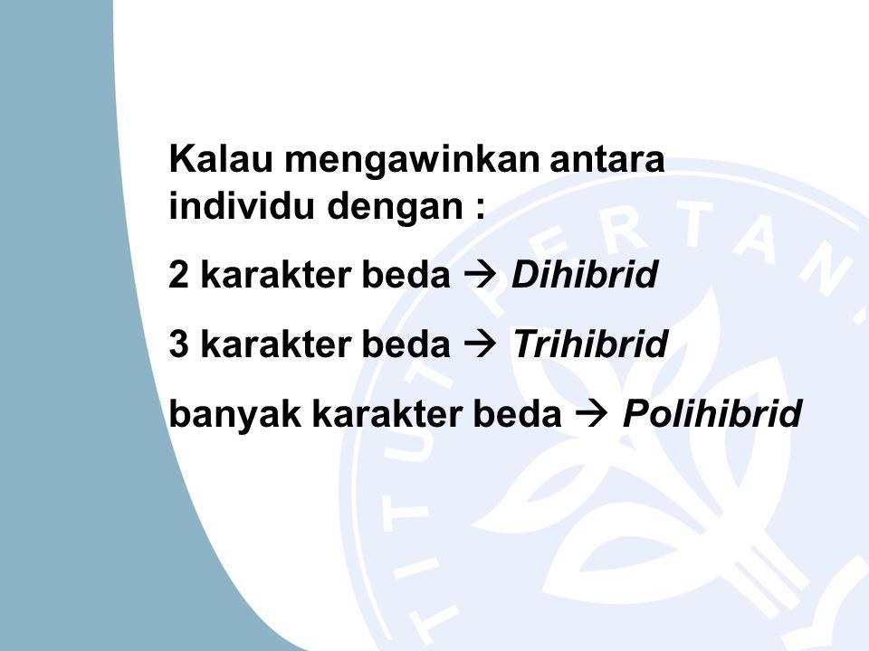 Kalau mengawinkan antara individu dengan : 2 karakter beda  Dihibrid 3 karakter beda  Trihibrid banyak karakter beda  Polihibrid