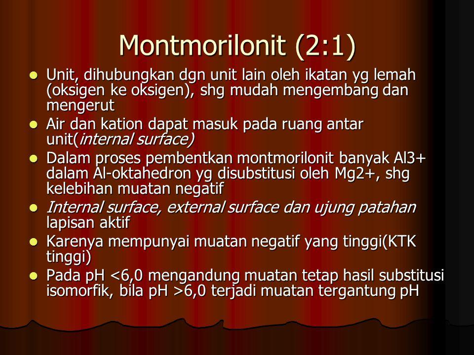 Montmorilonit (2:1) Unit, dihubungkan dgn unit lain oleh ikatan yg lemah (oksigen ke oksigen), shg mudah mengembang dan mengerut Unit, dihubungkan dgn