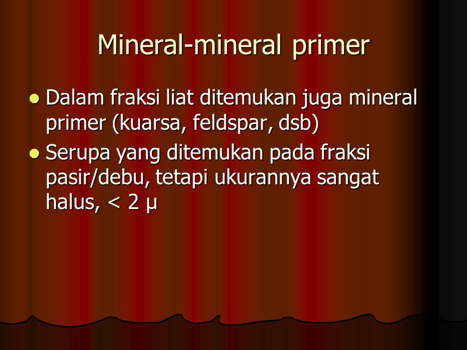 Mineral-mineral primer Dalam fraksi liat ditemukan juga mineral primer (kuarsa, feldspar, dsb) Dalam fraksi liat ditemukan juga mineral primer (kuarsa