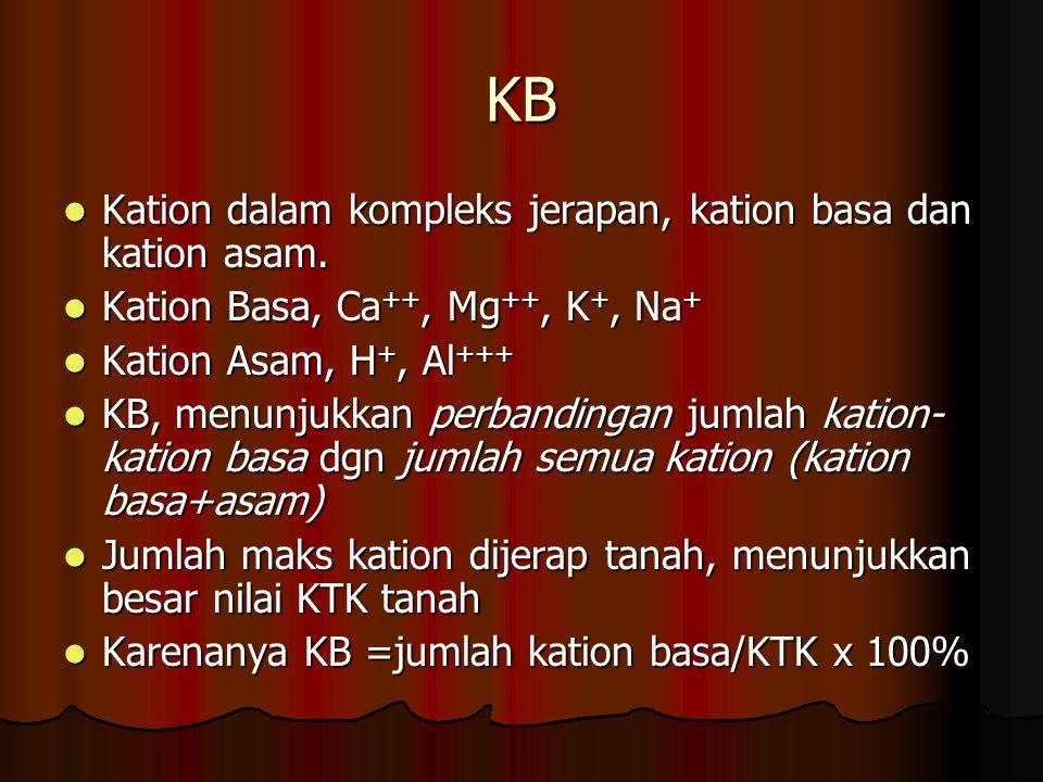 KB Kation dalam kompleks jerapan, kation basa dan kation asam. Kation dalam kompleks jerapan, kation basa dan kation asam. Kation Basa, Ca ++, Mg ++,