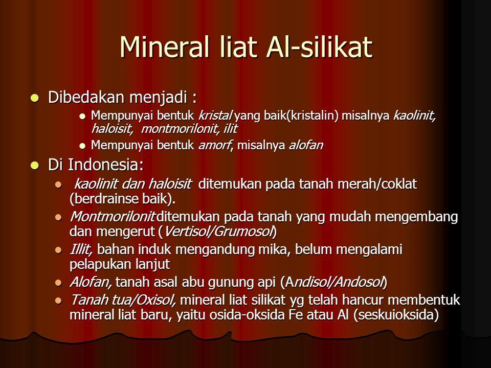 Mineral liat Al-silikat Dibedakan menjadi : Dibedakan menjadi : Mempunyai bentuk kristal yang baik(kristalin) misalnya kaolinit, haloisit, montmorilon