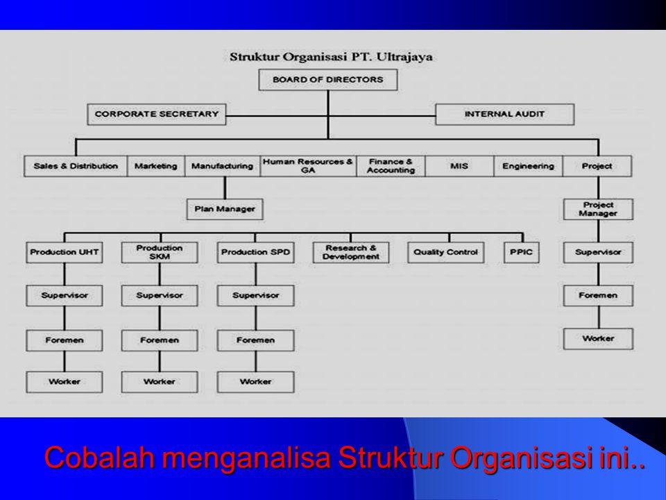 Determinan Struktur Organisasi:Otoritas, Kendali, Politik Oleh: Meily Margaretha