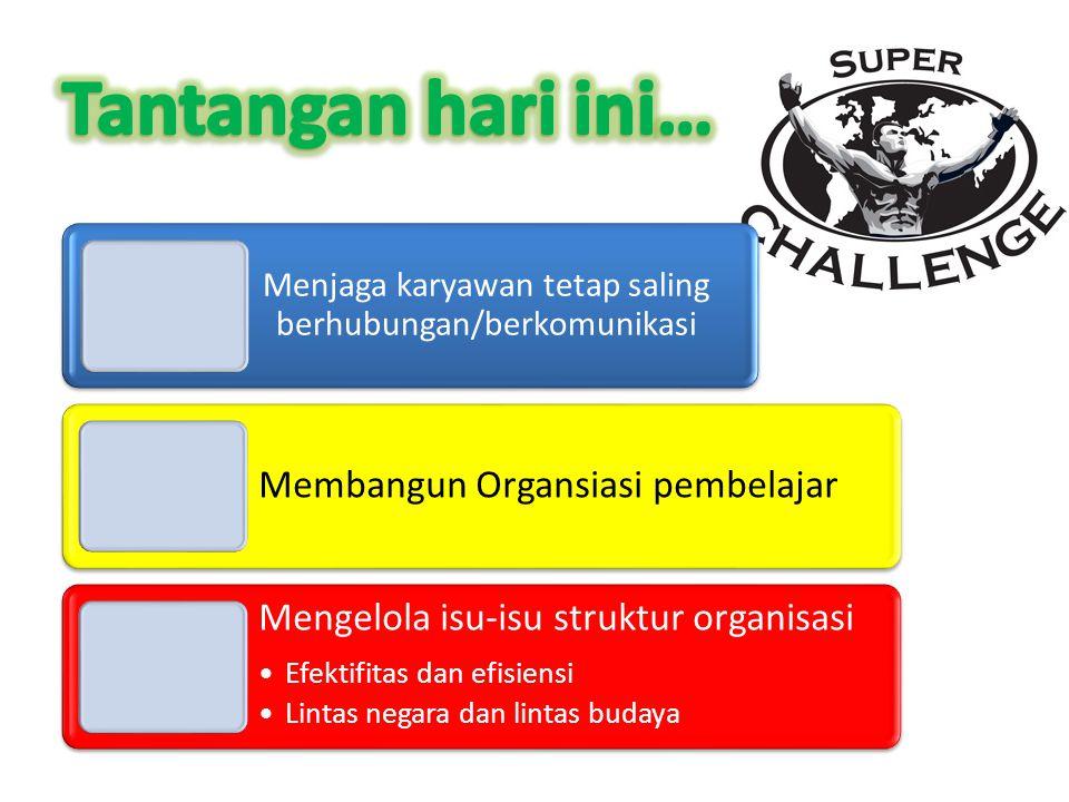 Menjaga karyawan tetap saling berhubungan/berkomunikasi Membangun Organsiasi pembelajar Mengelola isu-isu struktur organisasi Efektifitas dan efisiensi Lintas negara dan lintas budaya