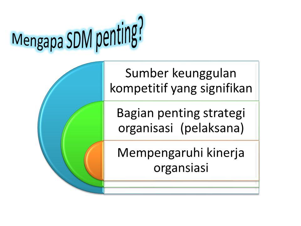 Sumber keunggulan kompetitif yang signifikan Bagian penting strategi organisasi (pelaksana) Mempengaruhi kinerja organsiasi