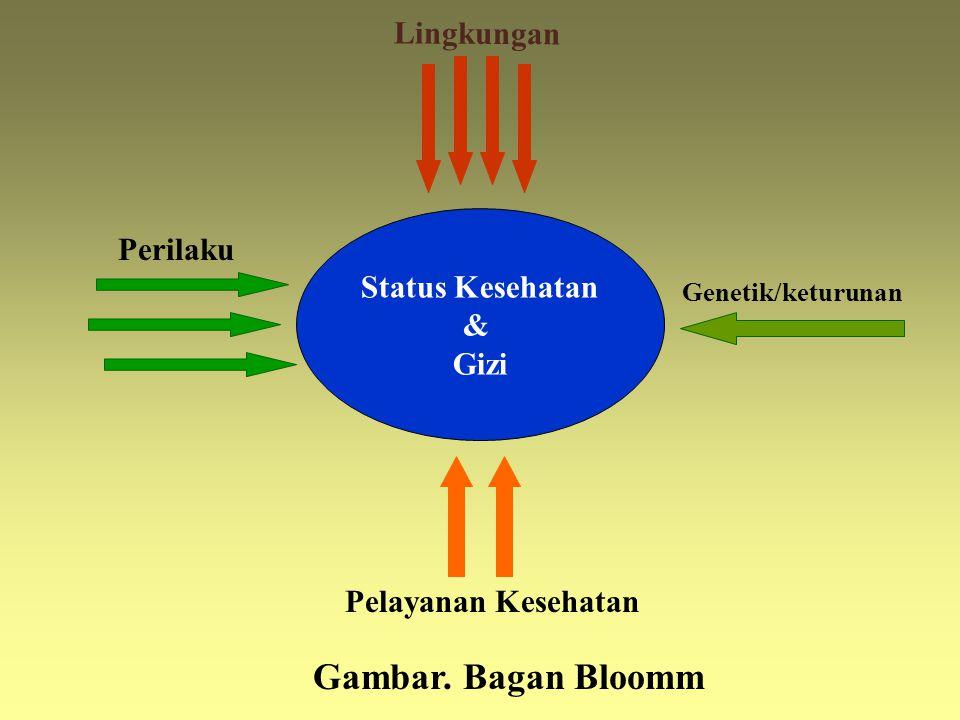 Status Kesehatan & Gizi Lingkungan Gambar. Bagan Bloomm Genetik/keturunan Pelayanan Kesehatan Perilaku