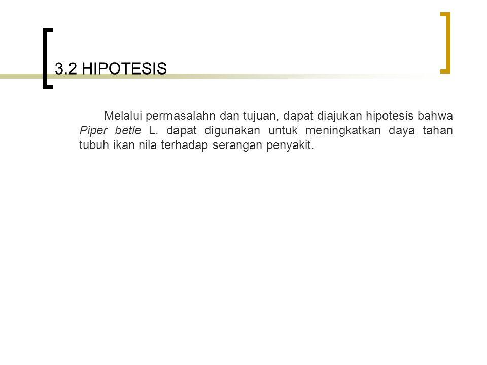 3.2 HIPOTESIS Melalui permasalahn dan tujuan, dapat diajukan hipotesis bahwa Piper betle L. dapat digunakan untuk meningkatkan daya tahan tubuh ikan n