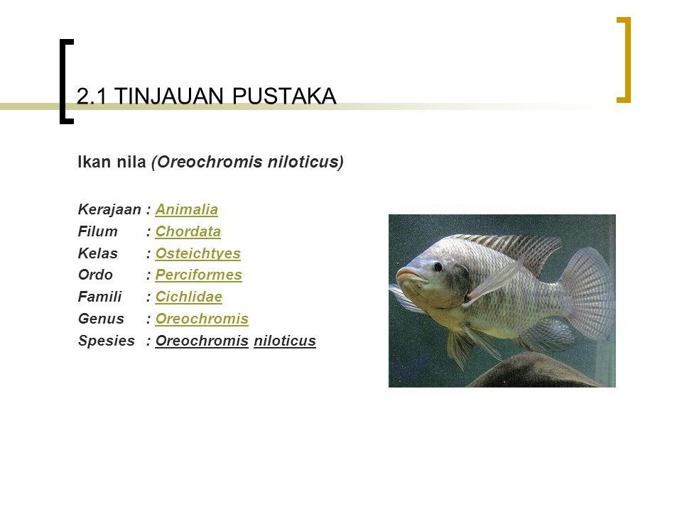 2.1 TINJAUAN PUSTAKA Ikan nila (Oreochromis niloticus) Kerajaan: AnimaliaAnimalia Filum: ChordataChordata Kelas: OsteichtyesOsteichtyes Ordo: Percifor
