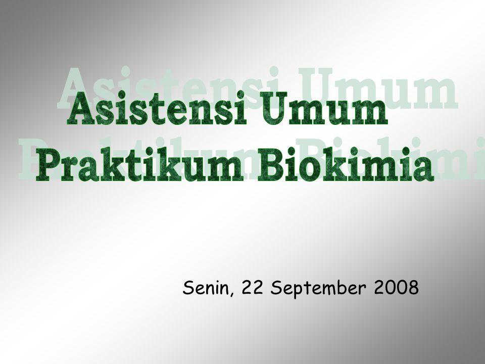 Senin, 22 September 2008