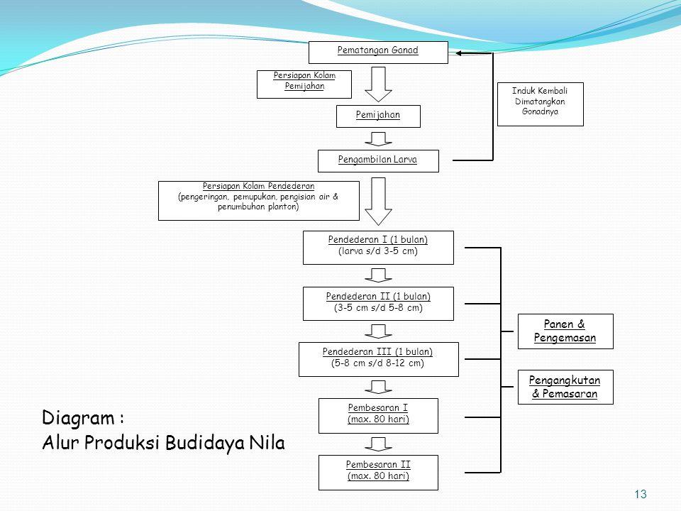 Kegiatan Utama Dalam Pembenihan Nila Produksi Benih Pendederan (P1 – P3) Panen & Pemasaran Pemilihan Induk Pemberokan/Recovery Pemijahan - Sapih Benih