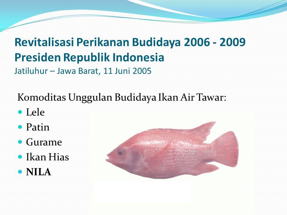 Revitalisasi Perikanan Budidaya 2006 - 2009 Presiden Republik Indonesia Jatiluhur – Jawa Barat, 11 Juni 2005 Komoditas Unggulan Budidaya Ikan Air Tawar: Lele Patin Gurame Ikan Hias NILA