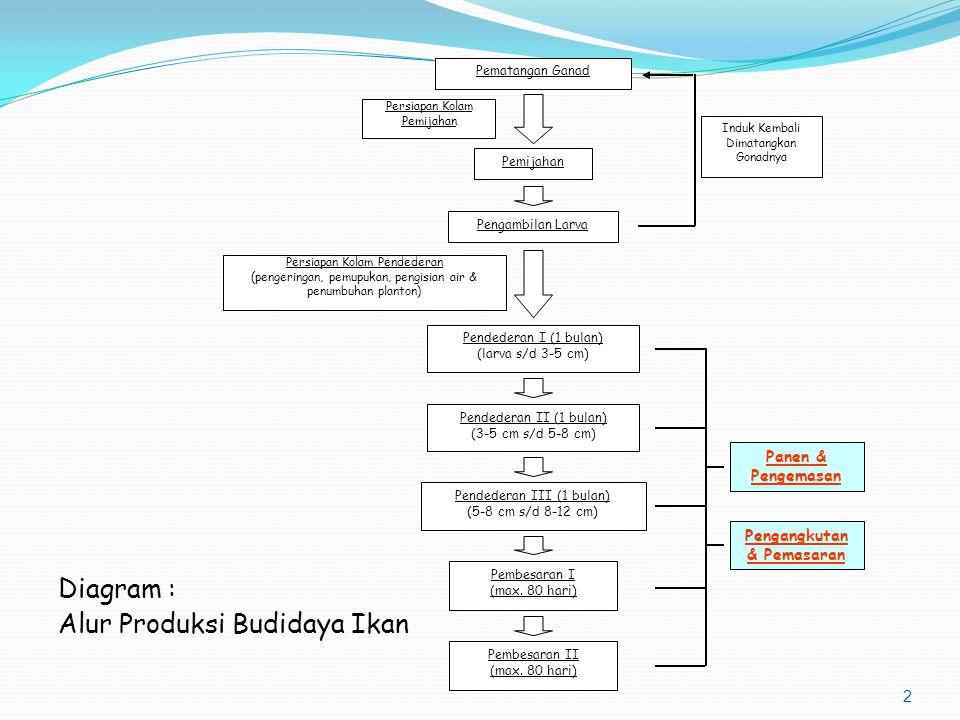 2 Diagram : Alur Produksi Budidaya Ikan Induk Kembali Dimatangkan Gonadnya Persiapan Kolam Pemijahan Persiapan Kolam Pendederan (pengeringan, pemupuka