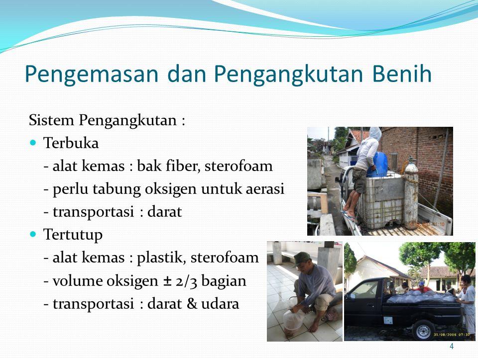 4 Pengemasan dan Pengangkutan Benih Sistem Pengangkutan : Terbuka - alat kemas : bak fiber, sterofoam - perlu tabung oksigen untuk aerasi - transporta