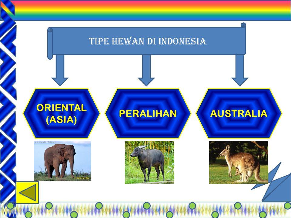 """16 Indonesia memiliki banyak hewan dan tumbuhan Endemik """"Tumbuhan"""" yang endemik terutama dari genus Rafllesia, contoh:; 1.Rafflesia arnoldii (endemik"""