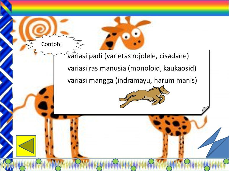 24 Yang merugikan: 1.Perusakan habitat 2.Penggunaan pestisida 3.Pencemaran 4.Perubahan tipe tumbuhan 5. Masuknya spesies tumbuhan dan hewan liar 6. pe