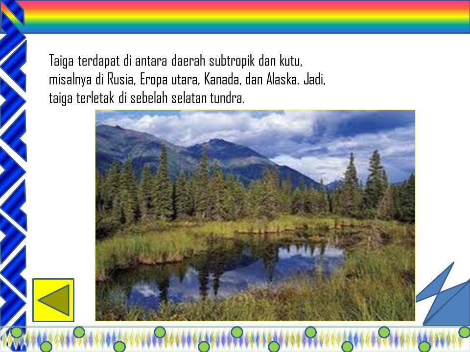 28 Tundra terdapat di lingkungan kutub utara dan kutub selatan, Green land, Siberia Utara. Daerah ini beriklim kutub, sehingga selalu tertututp salju.