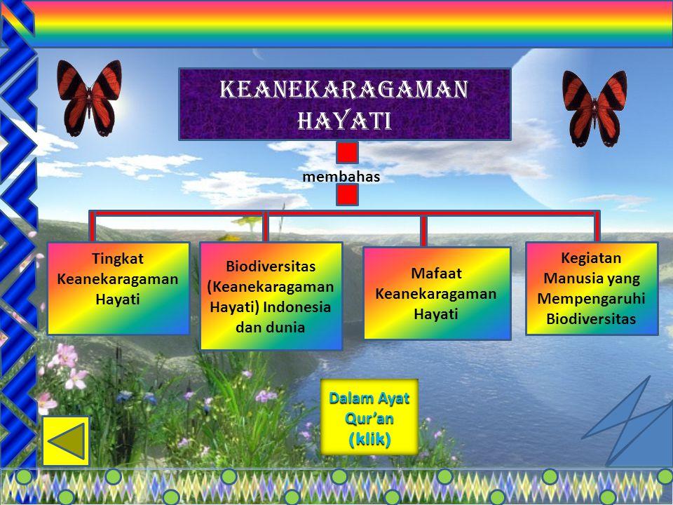 2 membahas membahas Tingkat Keanekaragaman Hayati Tingkat Keanekaragaman Hayati Biodiversitas Indonesia dan dunia Manfaat Keanekaragaman Hayati Kegiat