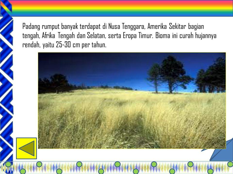 31 Bioma ini berada di daerah tropik, yaitu di indonesia, India, brazil, Kenya, Costa Rica, dan malaysia. Tumbuhan tumbuh dengan subur dan tinggi