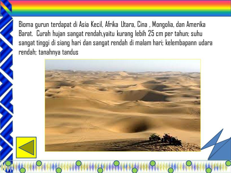 32 Padang rumput banyak terdapat di Nusa Tenggara, Amerika Sekitar bagian tengah, Afrika Tengah dan Selatan, serta Eropa Timur. Bioma ini curah hujann