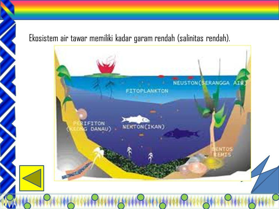 33 Bioma gurun terdapat di Asia Kecil, Afrika Utara, Cina, Mongolia, dan Amerika Barat. Curah hujan sangat rendah,yaitu kurang lebih 25 cm per tahun;