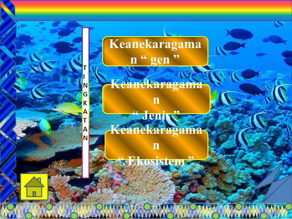 4 Keanekaragaman hayati adalah beberapa macam variasi mahluk hidup menyebabkan adanya perbedaan (variasi) antara satu dengan lainnya bentuk, ukuran, w