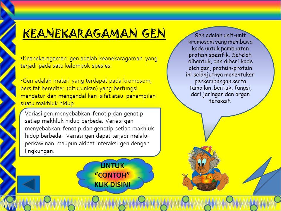 """5 Keanekaragama n """" gen """" Keanekaragama n """" Jenis """" Keanekaragama n """" Ekosistem """" TINGKATANTINGKATAN"""