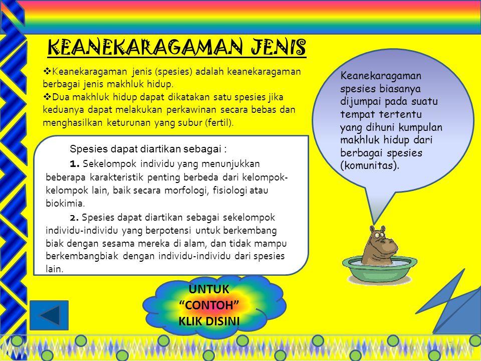 17 TIPE HEWAN DI INDONESIA ORIENTAL (ASIA) PERALIHANAUSTRALIA