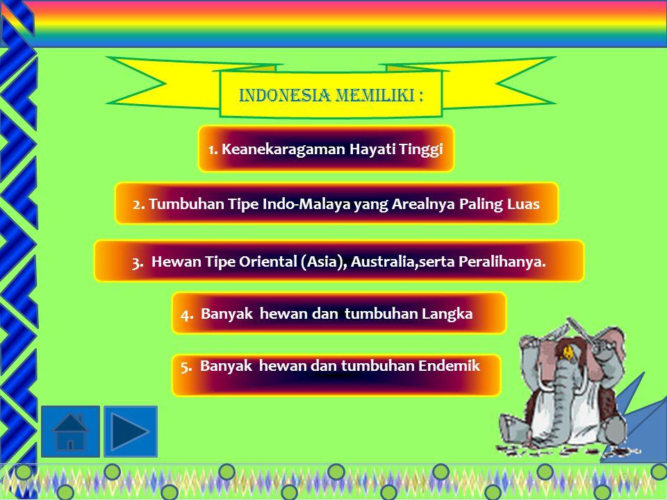 19 PeralihanPeralihan Mencakup fauna di wilayah: Sulawesi dan Kepulauan Nusa Tengggra (bagian tengah Contoh: Babi rusa Beruang kuskus AnoaKudaKuskus Kerdil Komodo