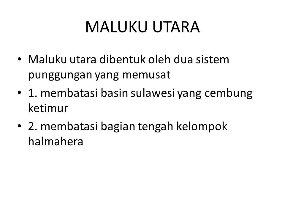 MALUKU UTARA Maluku utara dibentuk oleh dua sistem punggungan yang memusat 1. membatasi basin sulawesi yang cembung ketimur 2. membatasi bagian tengah