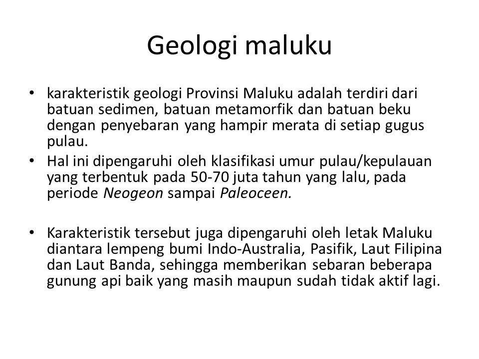 Geologi maluku karakteristik geologi Provinsi Maluku adalah terdiri dari batuan sedimen, batuan metamorfik dan batuan beku dengan penyebaran yang hampir merata di setiap gugus pulau.