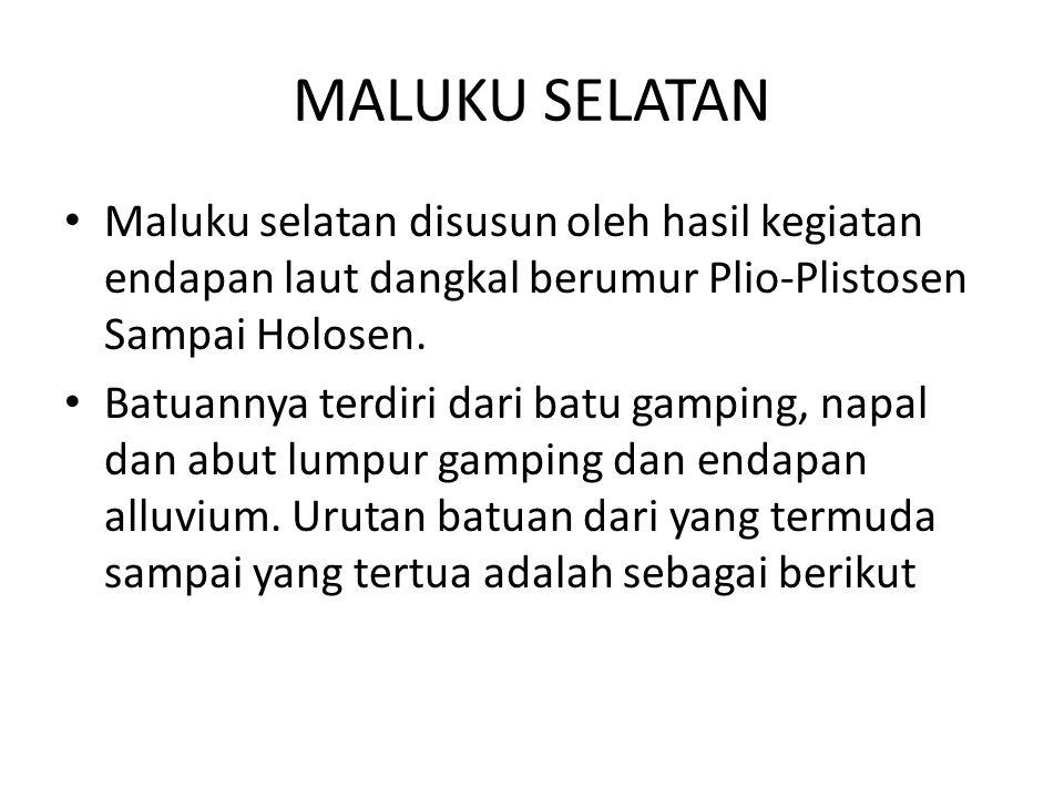 MALUKU SELATAN Maluku selatan disusun oleh hasil kegiatan endapan laut dangkal berumur Plio-Plistosen Sampai Holosen. Batuannya terdiri dari batu gamp