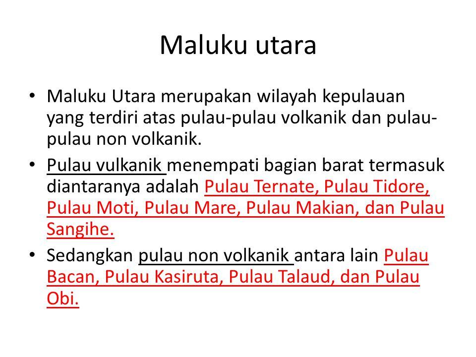 Maluku utara Maluku Utara merupakan wilayah kepulauan yang terdiri atas pulau-pulau volkanik dan pulau- pulau non volkanik. Pulau vulkanik menempati b