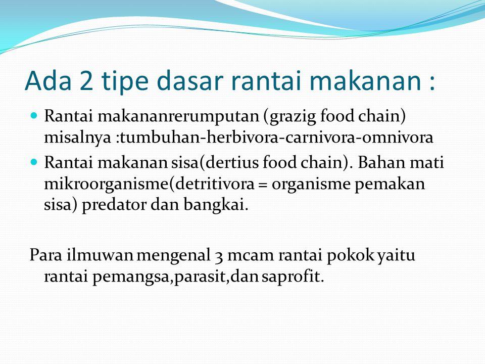 Ada 2 tipe dasar rantai makanan : Rantai makananrerumputan (grazig food chain) misalnya :tumbuhan-herbivora-carnivora-omnivora Rantai makanan sisa(dertius food chain).