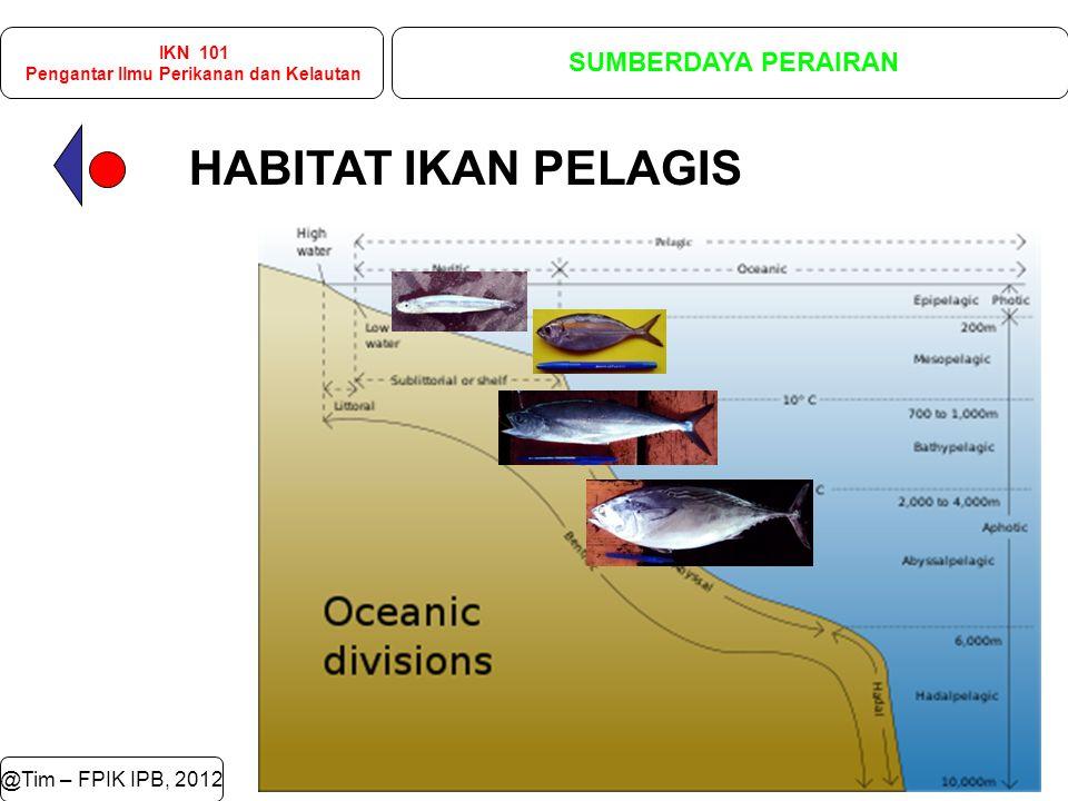 HABITAT IKAN PELAGIS @Tim – FPIK IPB, 2012 IKN 101 Pengantar Ilmu Perikanan dan Kelautan SUMBERDAYA PERAIRAN