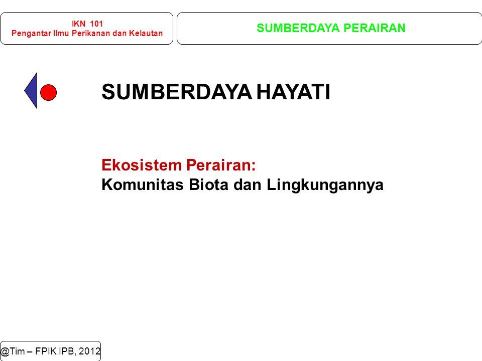 @Tim – FPIK IPB, 2012 IKN 101 Pengantar Ilmu Perikanan dan Kelautan SUMBERDAYA PERAIRAN Ikan Glyptothorax major