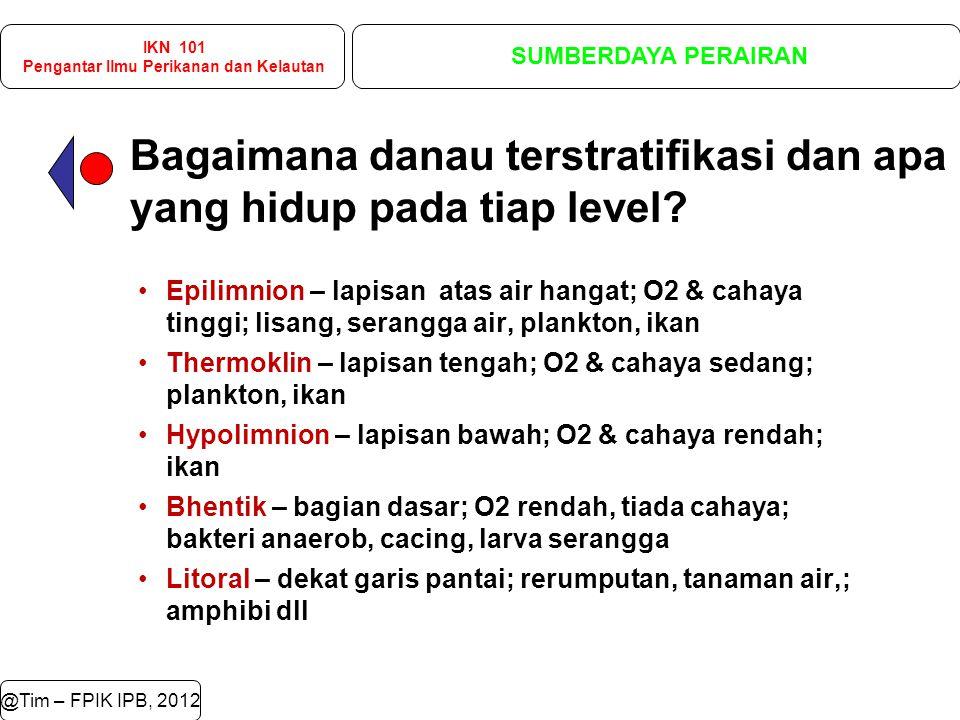 @Tim – FPIK IPB, 2012 Bagaimana danau terstratifikasi dan apa yang hidup pada tiap level.