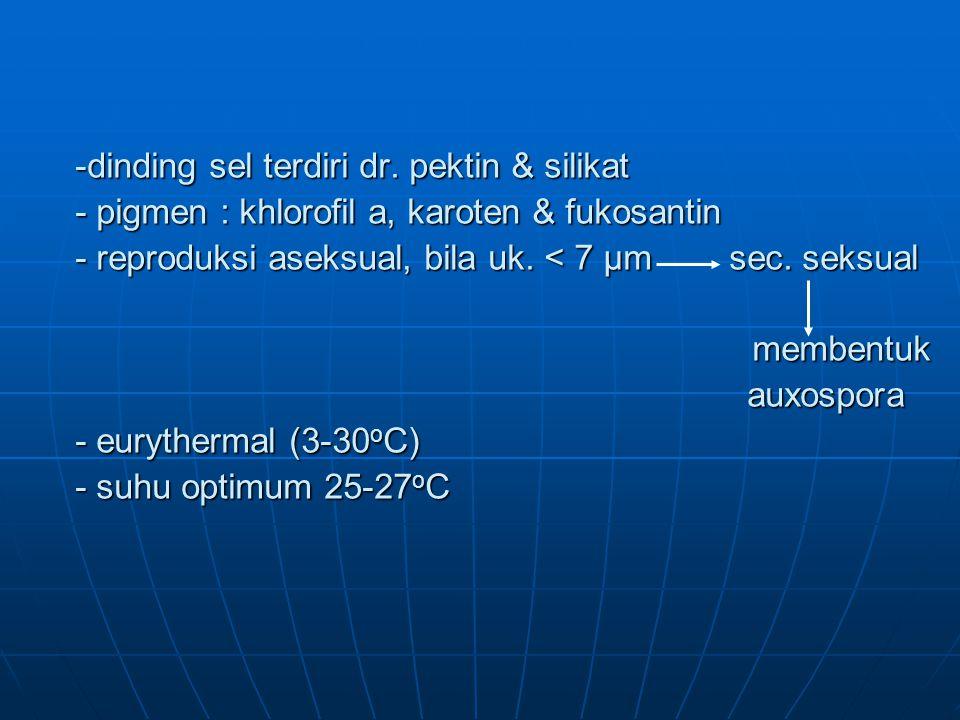 -dinding sel terdiri dr.