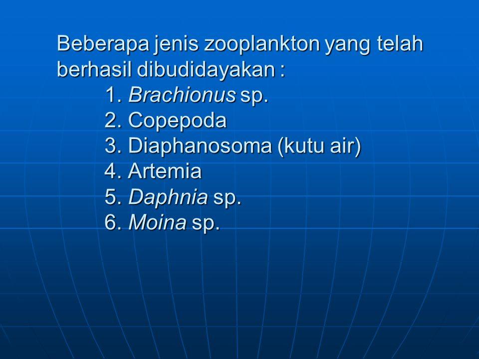 Beberapa jenis zooplankton yang telah berhasil dibudidayakan : 1.